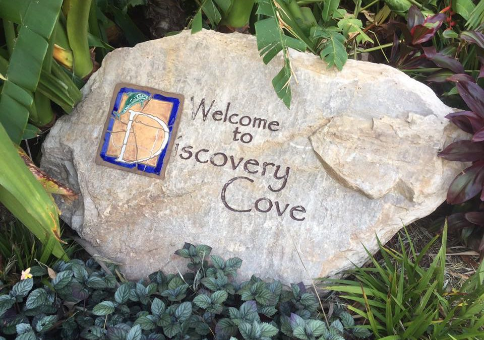Discovery Cove: Central Florida's All-Inclusive Tropical Day Resort